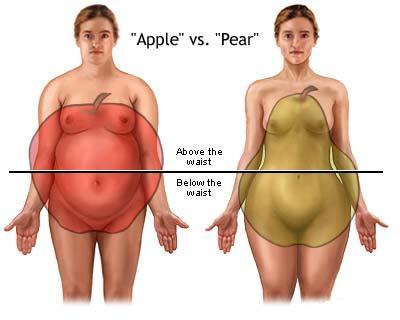 grăsime în obezitate)