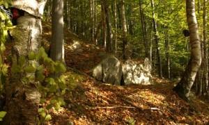 Bârlog situat în fisura unui bloc de rocă, monitorizat video in sezonul hibernal 2011-2012