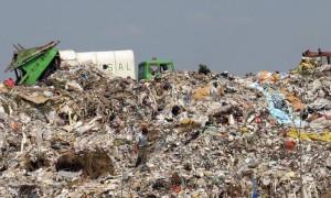 Groapa Glina, ecologie si poluare - Greenly Magazine