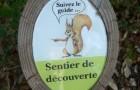 Indicator eco - Parcul natural din inima orasului ! - Greenly Magazine
