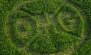 Adevarul despre Organismele Modificate Genetic