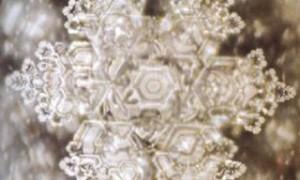Massaru Emoto - cristal apa - Apa si misterele ei - Greenly Magazine