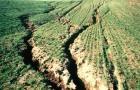 eroziunea solurilor