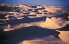 Sahara -  Superlativele geografiei - Greenly Magazine
