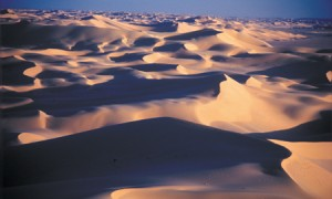 Sahara -  Superlativele geografiei - Greenly Magazine