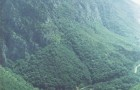 Fotografie realizata la inceputul anilor 2000, la foisorul de sub varful Elisabeta (629 m) - Poveste de iubire (partea I-a) - Greenly Magazine