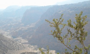Rezervația Biosferei Dana - Iordania