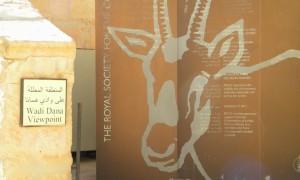 Cercetare in Rezervatia Biosferei Dana - Iordania