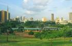 Orasul verde