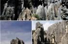 Padurea de piatra Shi Lin - provincia Yunnan