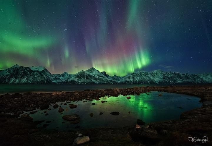 Aurorele, cortine de lumină în noapte - Greenly Magazine