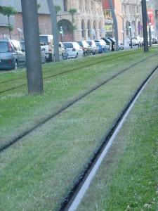 Linii de tramvai cu gazon intre ele