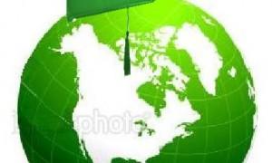 Educație environmentală. Informare și utilizarea resurselor de pe Internet