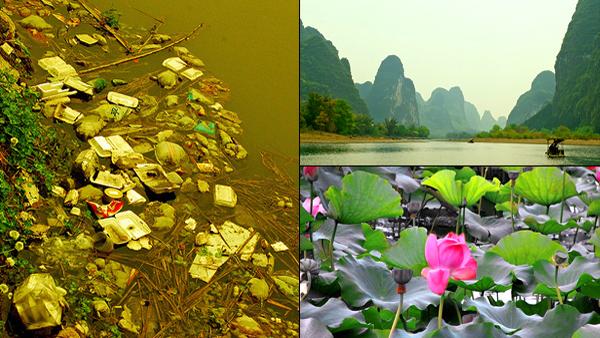 Delta_Fluviului_Yangtze,_China