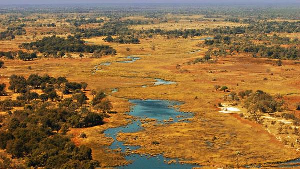 Delta_Okavangoului,_Botswana