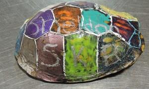 Sheldon - neputința unei țestoase ajunse în mâna omului