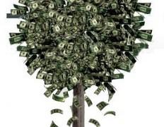 Pom-cu-bani-brad-de-cracion-dolari-ornament-pato-blog-232x300