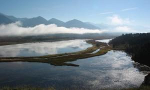 Zonele umede - armonia dintre apă și pământ