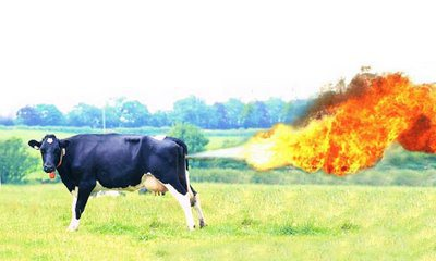 cow-methane