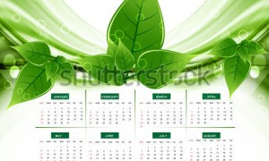 stock-vector--calendar-eco-natural-green-lives-stylish-vector-wave-114833290