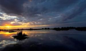 Dincolo de miracolul naturii - Rezervația Biosferei Delta Dunării