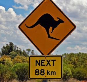 Kangaroo crossing sign in Australia