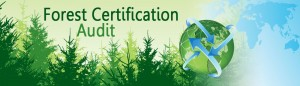 forest-certification-audit-header