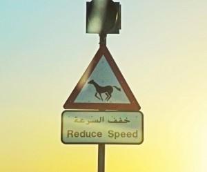 Horse crossing sign in Dubai