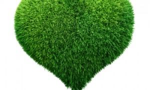 Inima verde a orașului
