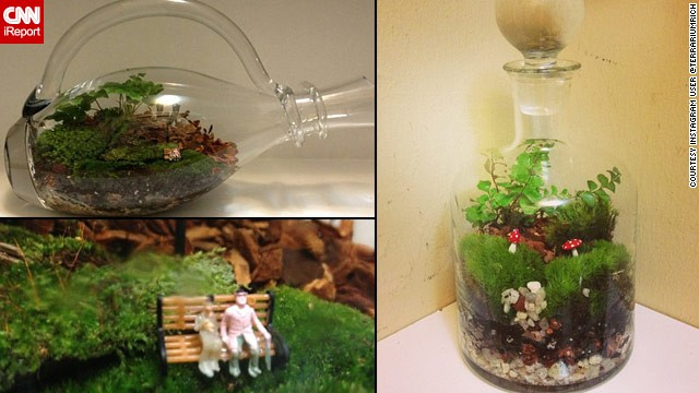 130419190950-terrariumrich-bottle-terrium-planter-split-horizontal-gallery