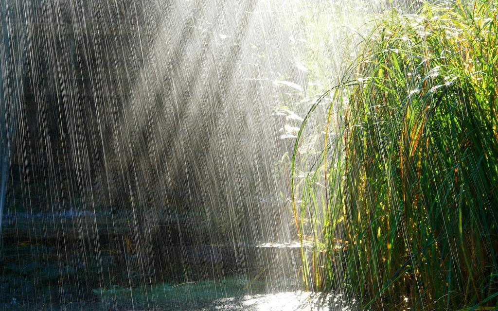 imagini-de-ploaie-4