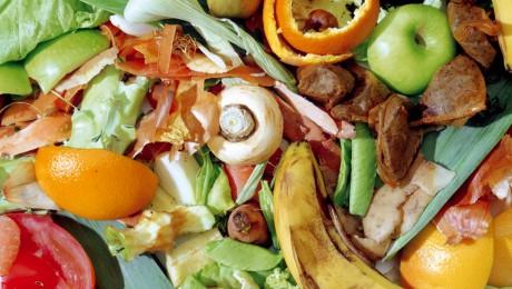 5 filmulețe educative despre risipa de mâncare