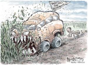 biocombustibles-1