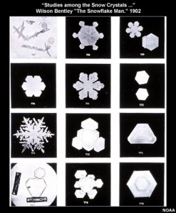 snow_grains_1902