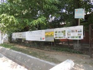 Expozitie amenajată la școala Valea Argovei - Foto David Ovidiu