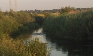 Râul Neajlov, în satul Gorneni, Jud. Giurgiu
