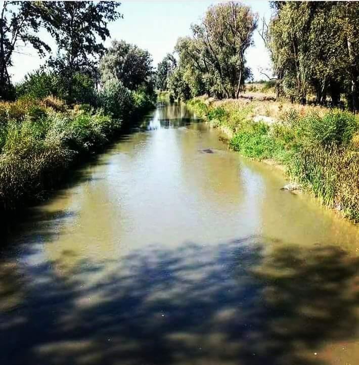 Fig.1 Cursul mijlociu al râului Ciorogarla