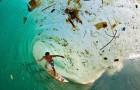 Vesti proaste de sfarsit de octombrie:WWF si IPCC arata ca oamenii isi distrug planeta mai eficient si mai rapid decat era prevazut